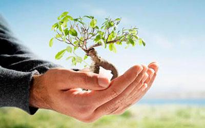 Consultoria-e-assessoria-ambiental-ecopel